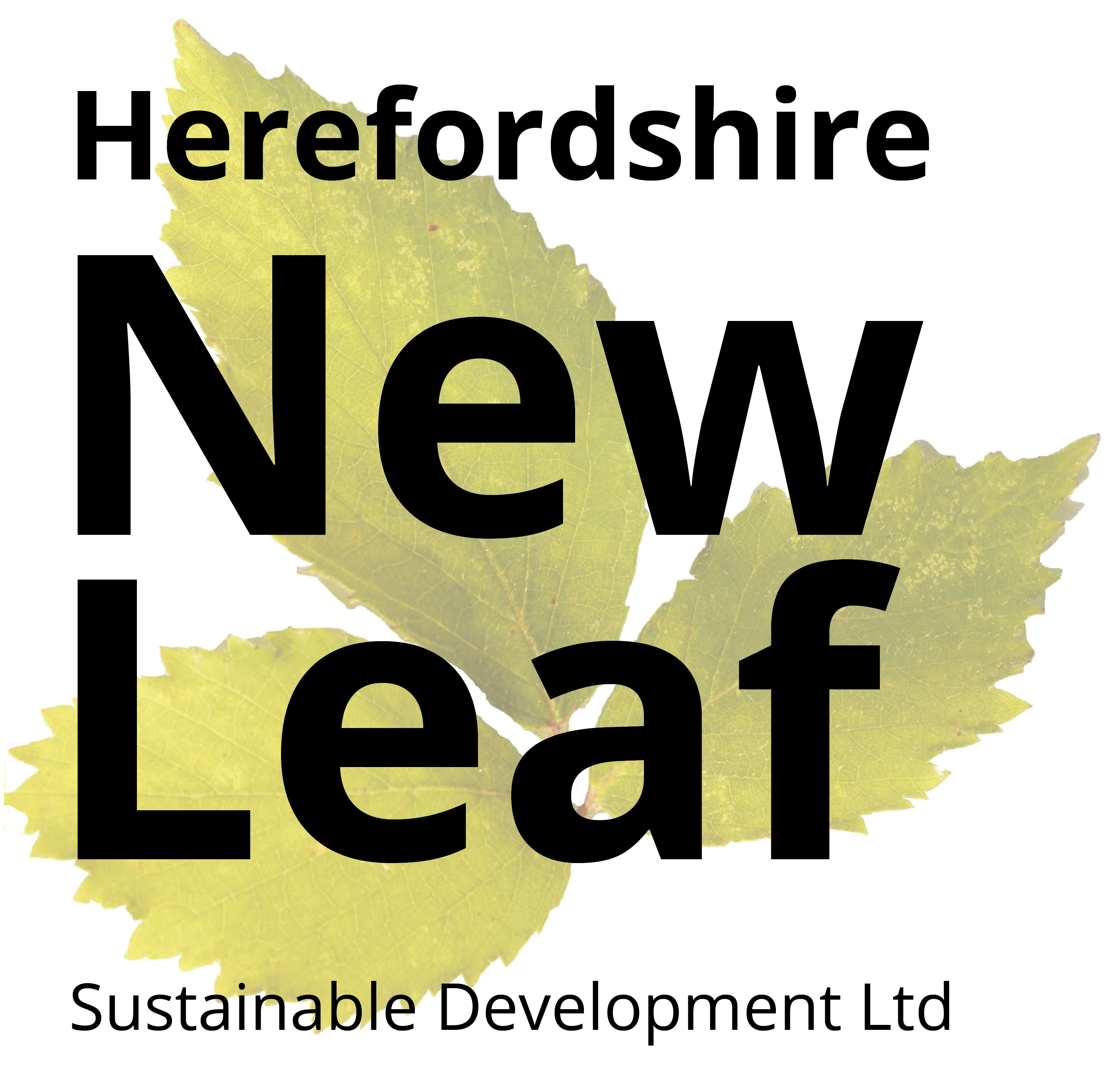 New Leaf Sustainable Development